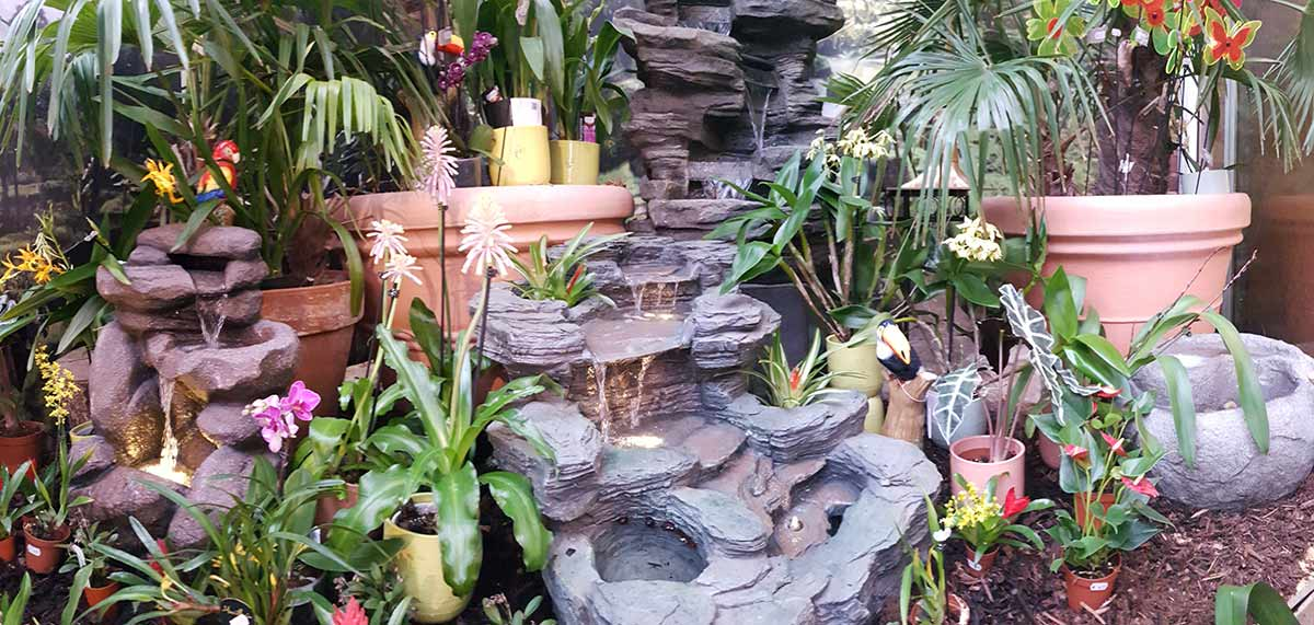 Orchideenausstellung ist eröffnet.
